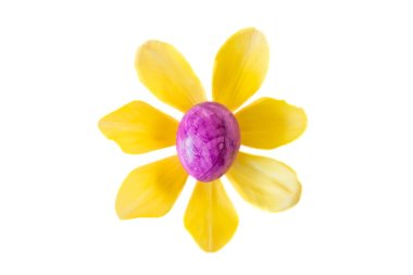 Flower made of a violet easter egg and yellow tulip blossom
