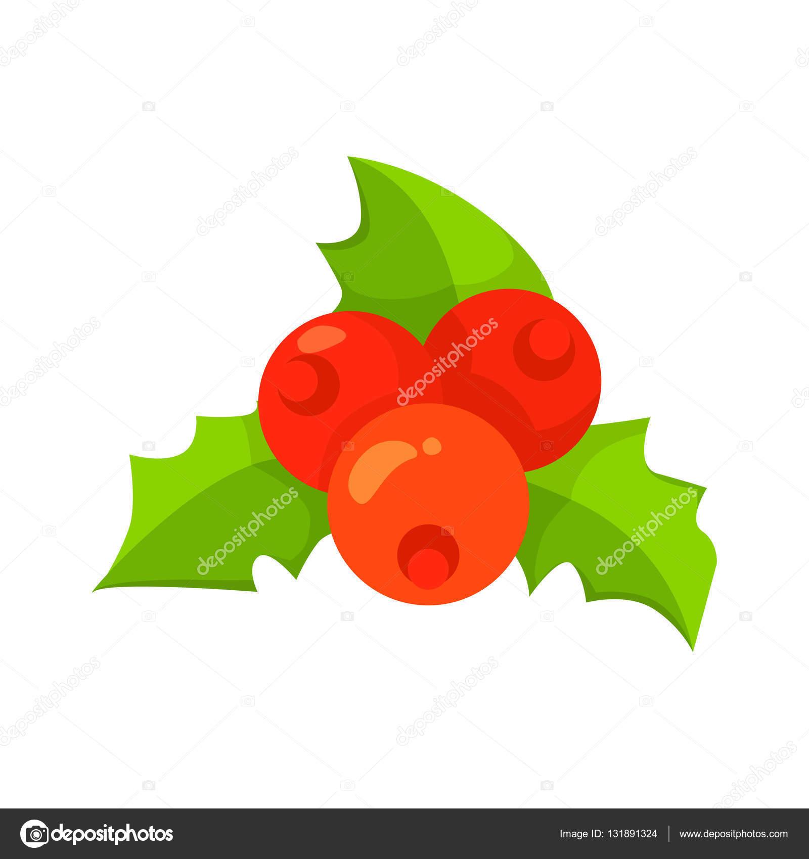 Vector de hojas de acebo y frutos aislados en blanco. Estilo de ...