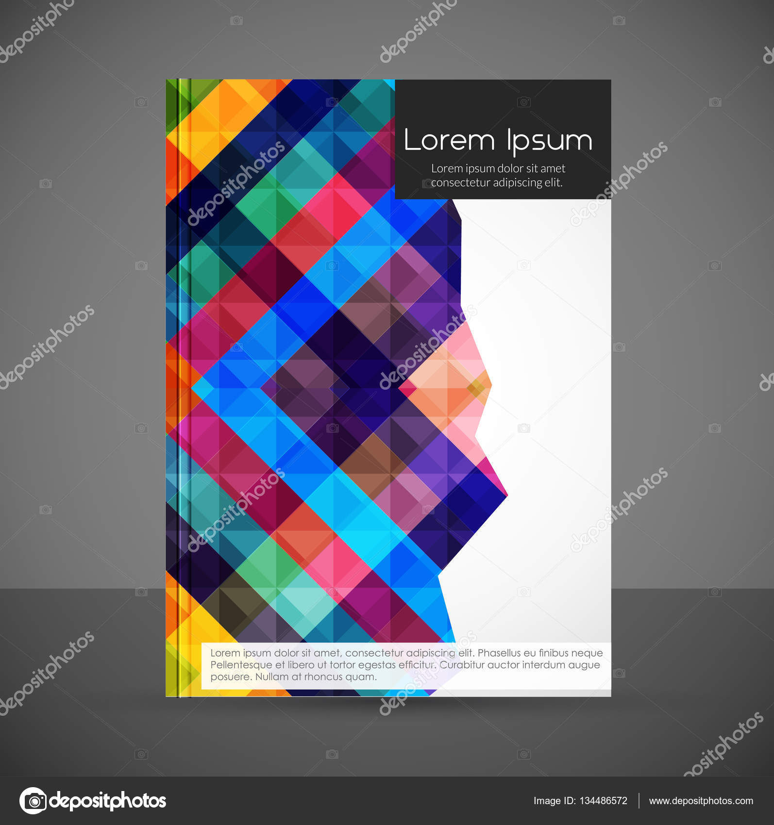stylish colorful book cover template — Stock Vector © ibrandify ...