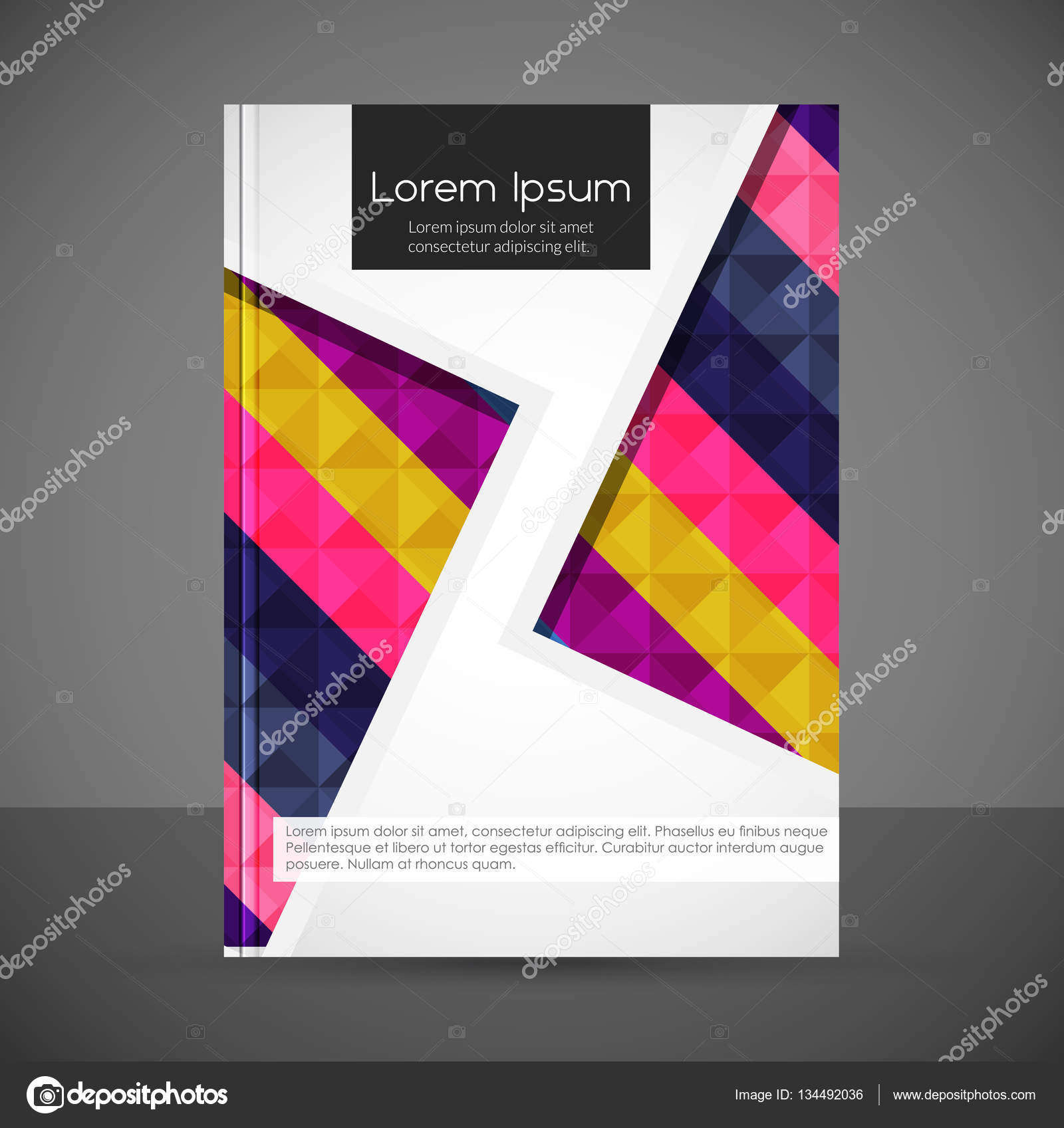 Stylish colorful book cover template Stock Vector ibrandify