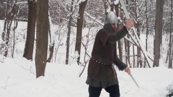 Medieval viking warriors in armor fighting in a winter forest with two swords