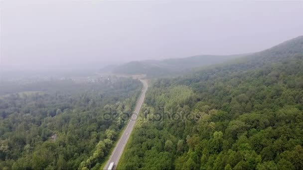 silnice v hustém lese mlha