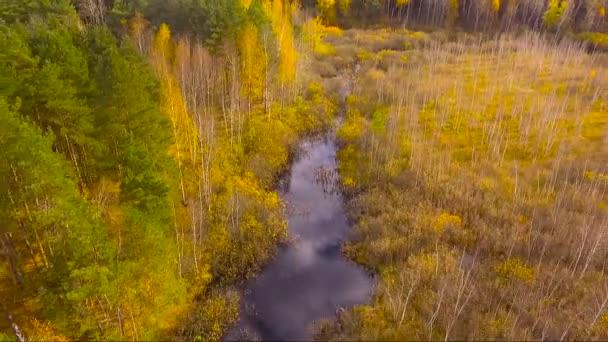 átlátszó folyó közel az úthoz