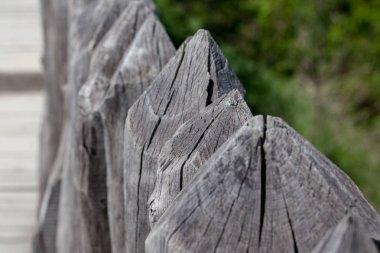 Wooden antique palisade