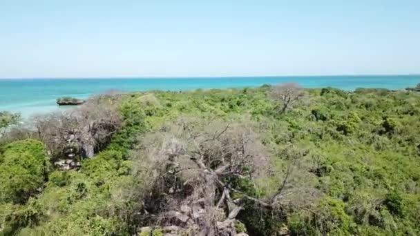 Létání za baobab a svěží zelené akácie