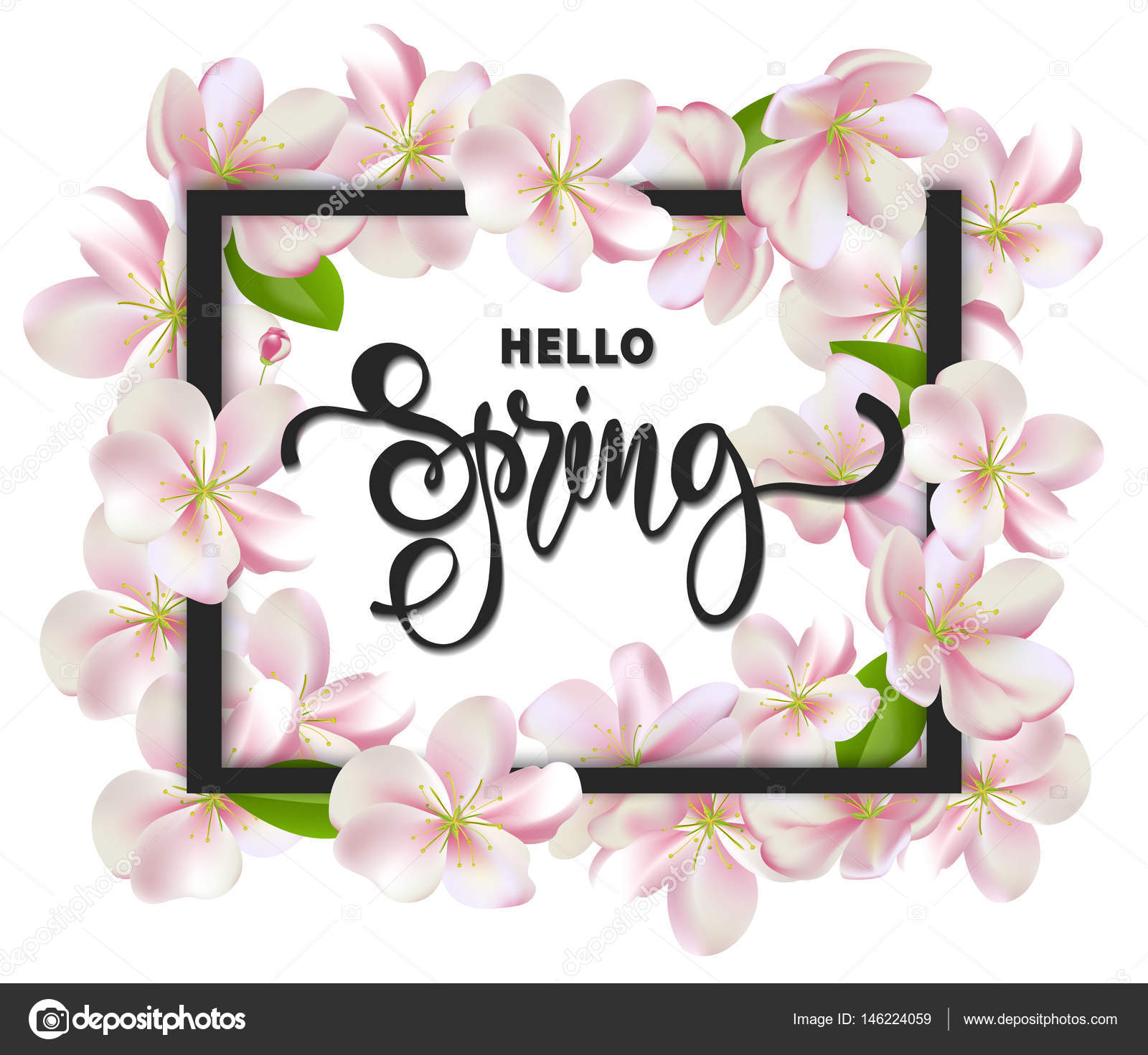 Hello Spring Background With Cherry Blossoms, Leaves And Branches.Greeting  Card With Hand Drawn