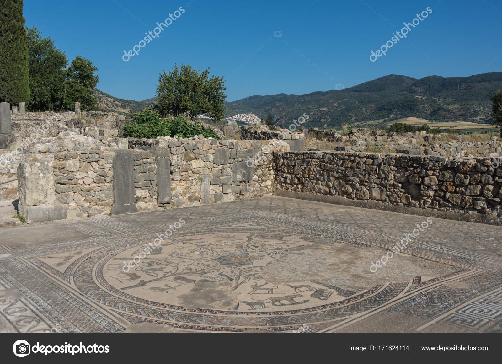 Fußboden Nord ~ Mosaik fußboden ruinen von volubilis die ausgrabungen der
