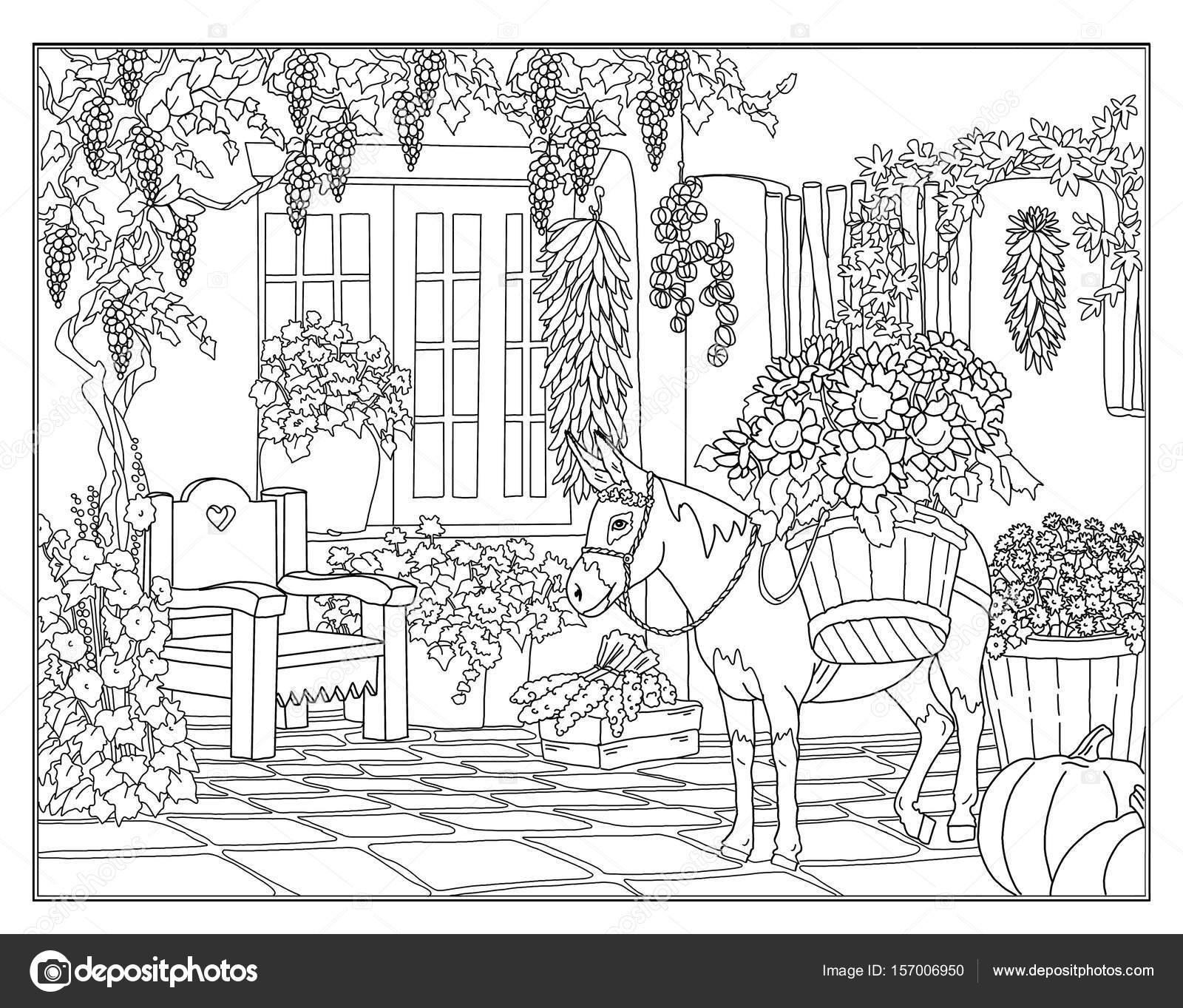 Sayfa Donkey Ayçiçeği Ile Boyama Stok Foto Larisakuzovkova