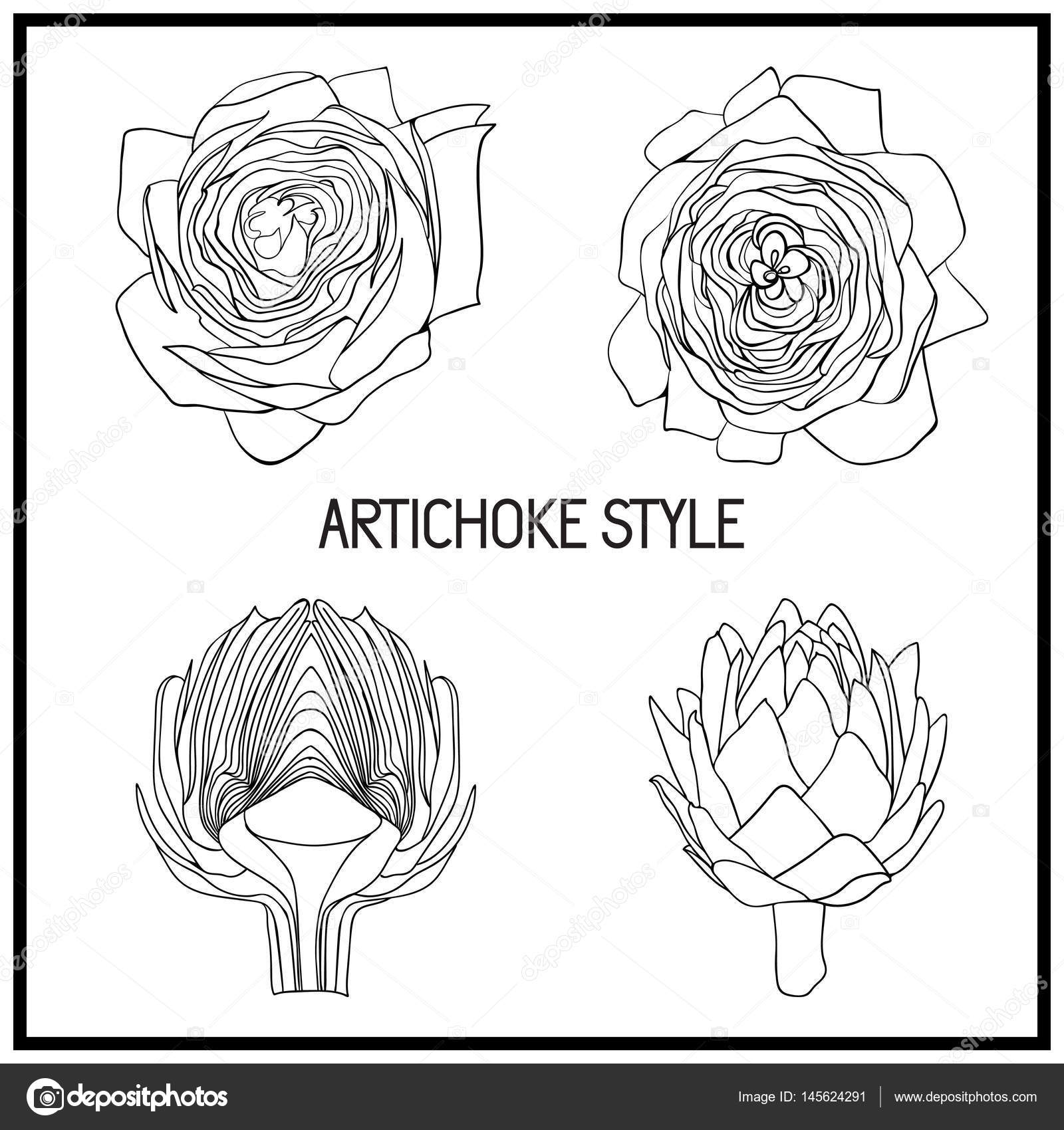 Set Of Artichoke Symbol Style For Beauty Salon Eco Store Cafe