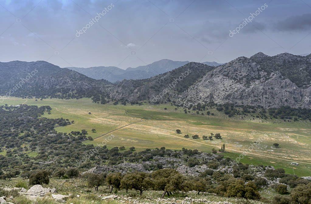 The Llanos de Libar in the natural park of Grazalema, Andalusia