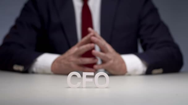 Financial director in bank holding. Chief financial officer manages economic