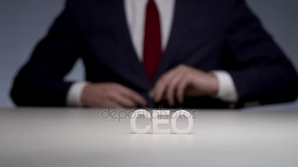 Chief executive officer in commercial company for development strategy