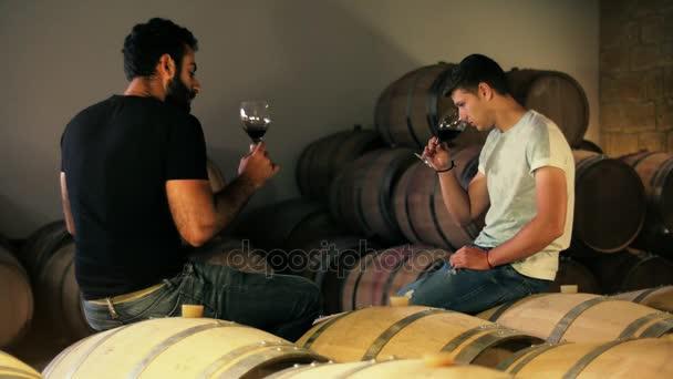 A fiatalember borkereskedő és borok sommelier, borkóstoló pince helyiségben ital