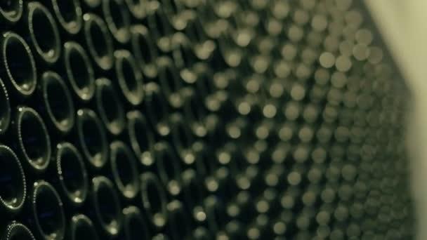 Lahví pro plnění zralé nápoj víno výroby šarže. Skleněná láhev na víno
