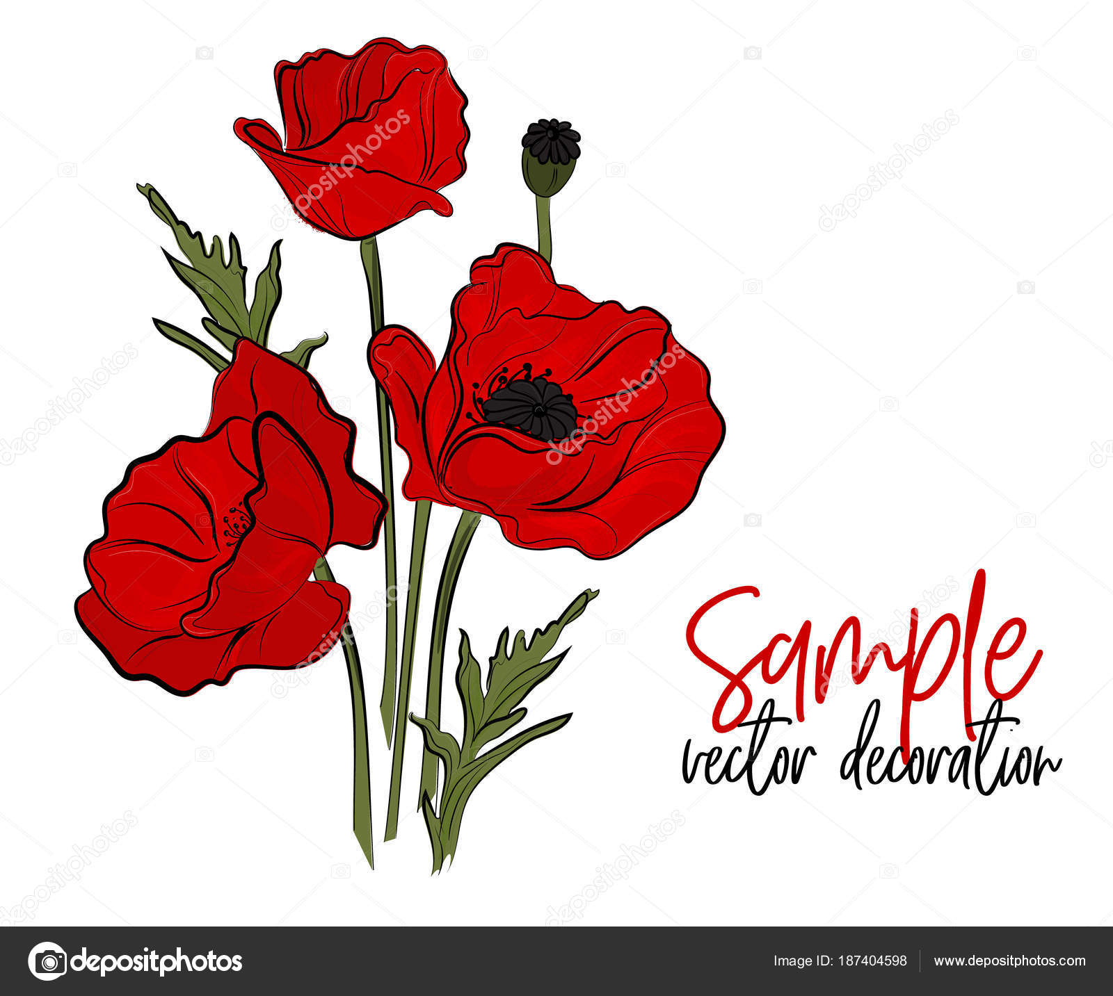 Vector red poppies flowers bloom symbol of spring botany vector red poppies flowers bloom symbol of spring botany illustration opium season holiday mightylinksfo