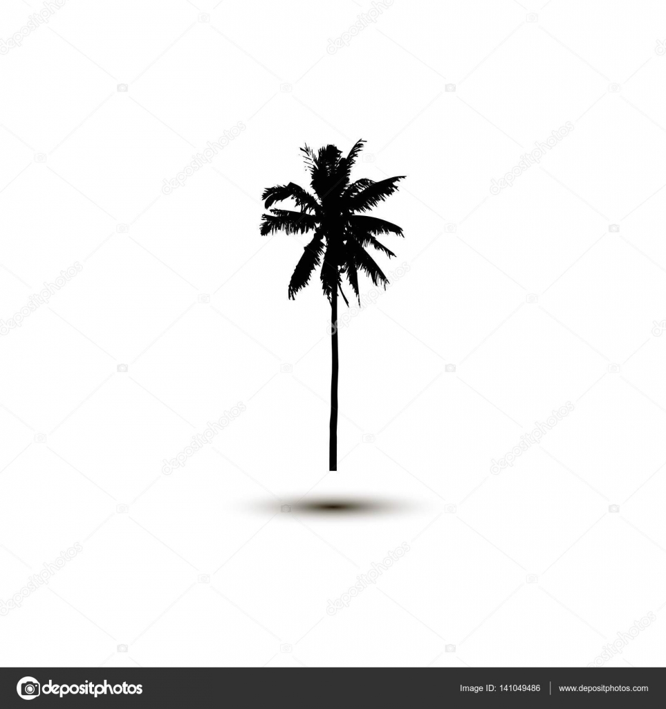 outline of coconut tree