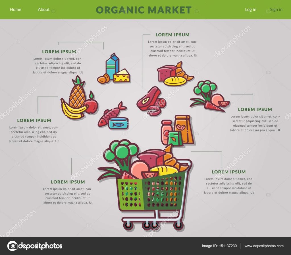 Web-Site online Lebensmittel einkaufen — Stockvektor © genadiymolnia ...
