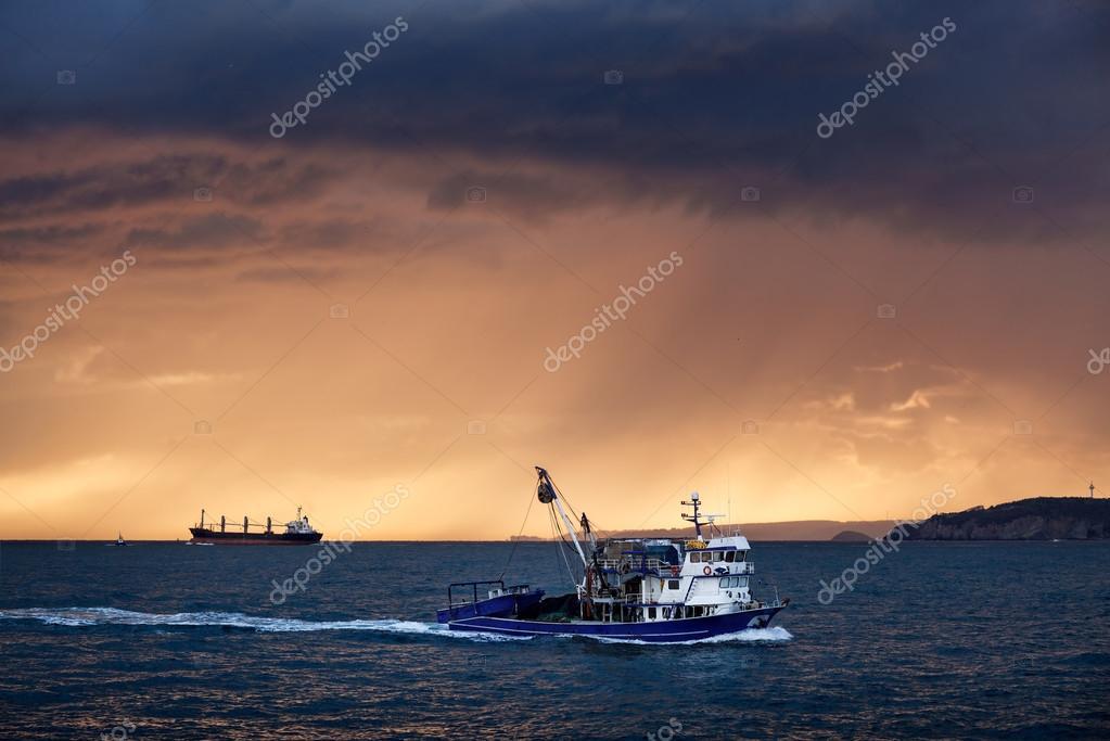 Cargo ships on sea