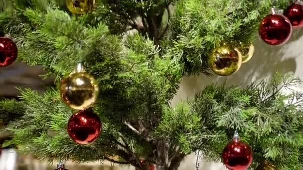 fehér és piros labdákat a karácsonyfa