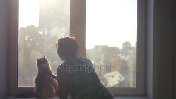 Krásný nadýchaný kočka sedí na zadních nohách a tančí s dívkou ve sluchátkách pozadí na panoráma města rozostření na slunci. slowmotion. 1920 × 1080
