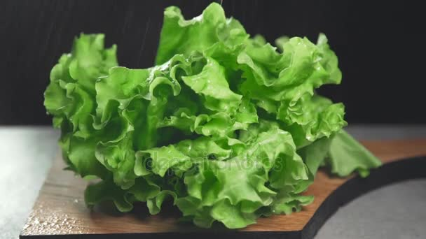 Fresh leaves of green salad, greens and vegetables, vitamins in healthy food