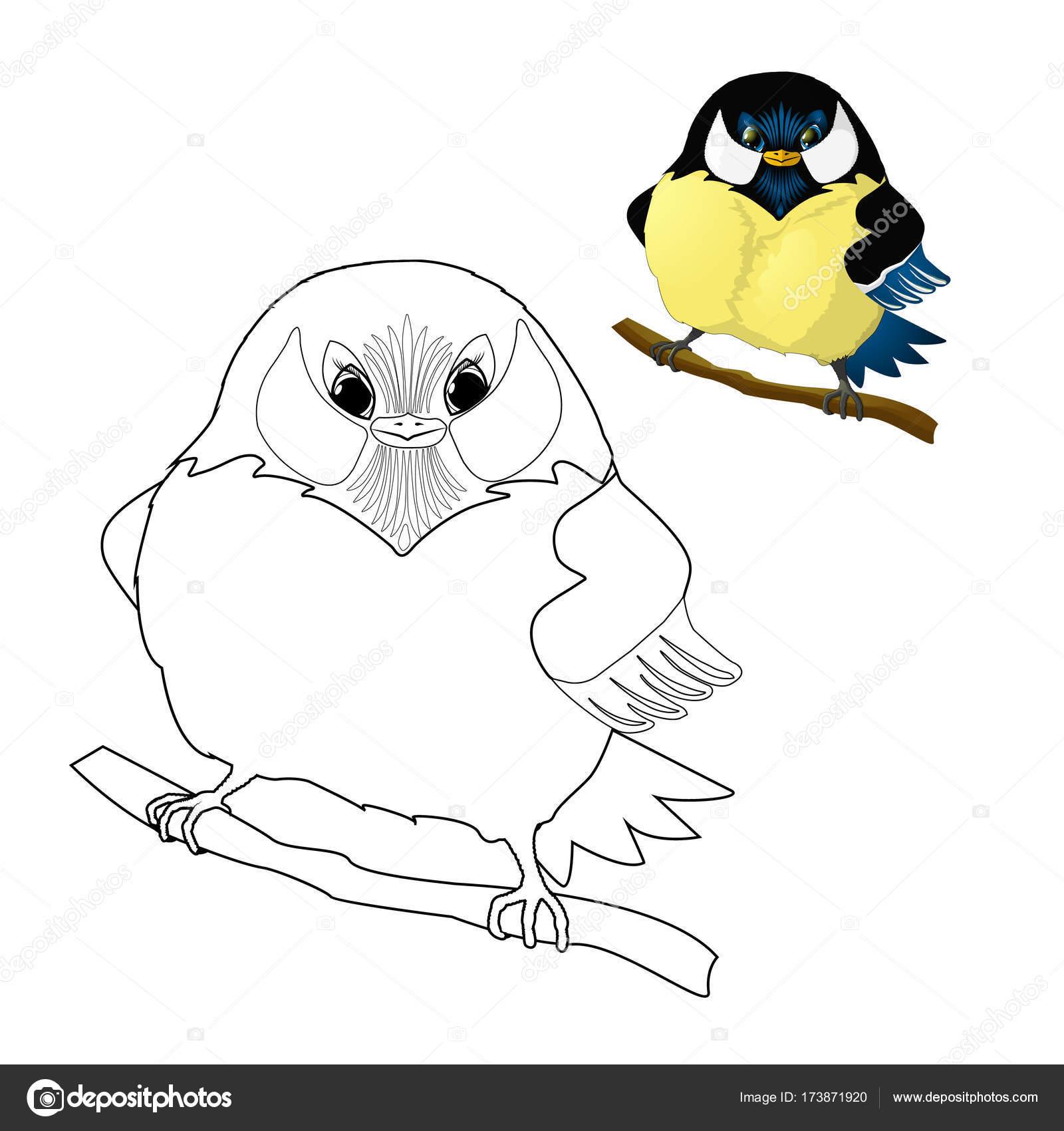 Pájaro - carbonero para colorear para niños — Vector de stock ...