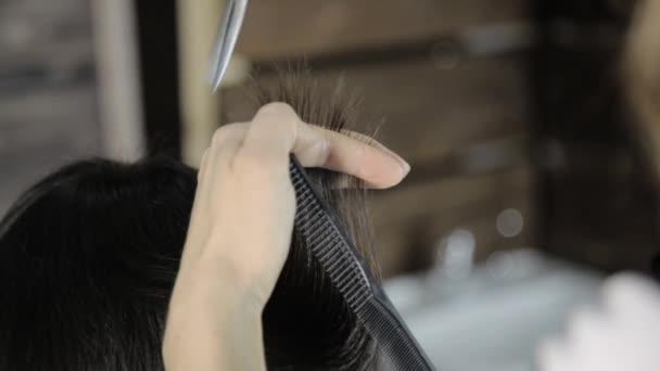 stylista škrty vlasy pro mladou ženu v salonu krásy, dělá účes pro dívku