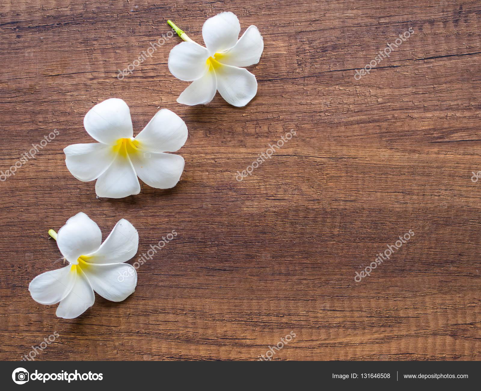 Plumeria frangipanier fleur de Spa sur le bois