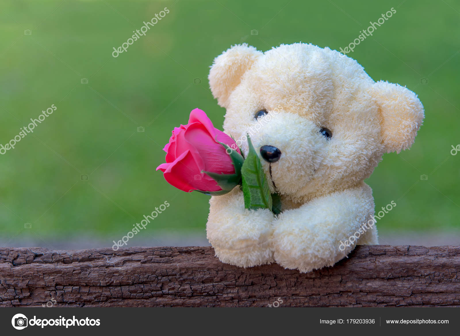 cute teddy bear clutching red rose its arms wooden background