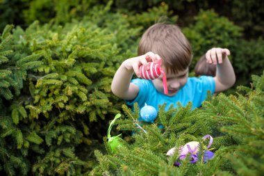Little boy hunting for easter egg in spring garden on  day. Cute  child with traditional bunny celebrating feast.