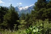 Chůzi na hory Elbrus regionu