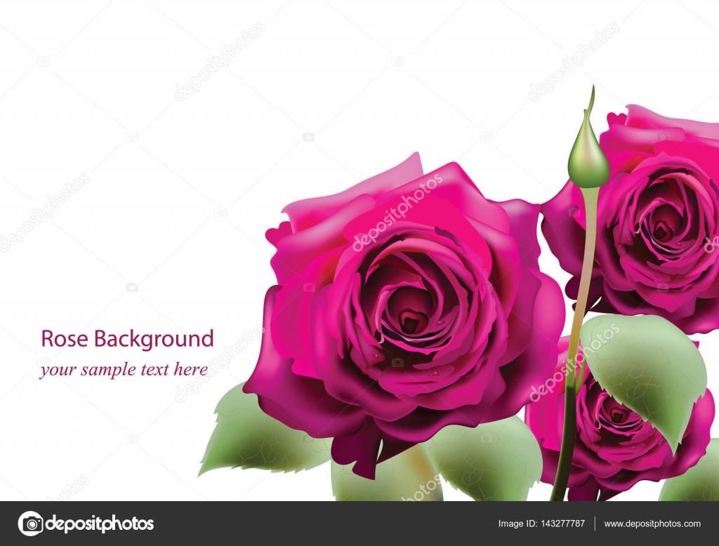 Realistic pink roses bouquet beautiful flowers postcard for happy realistic pink roses bouquet beautiful flowers postcard for happy valentines day birthday anniversary izmirmasajfo