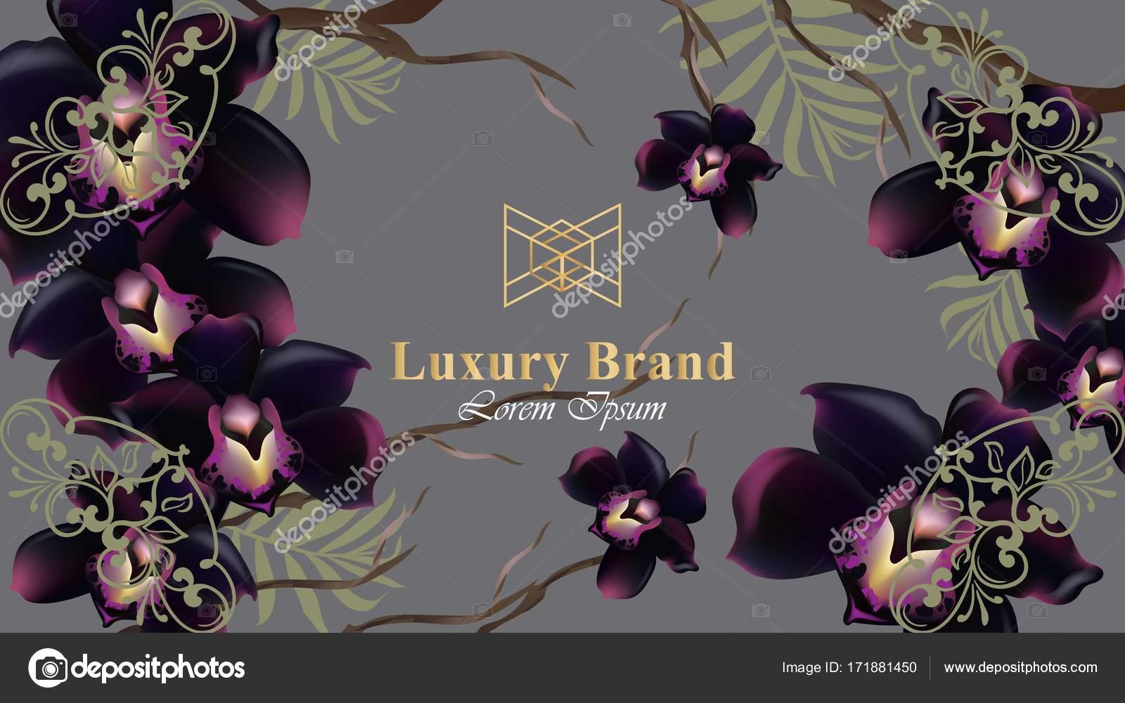 Flores Orquideas Negras Tarjeta Vector Hermosa Ilustracion Para La
