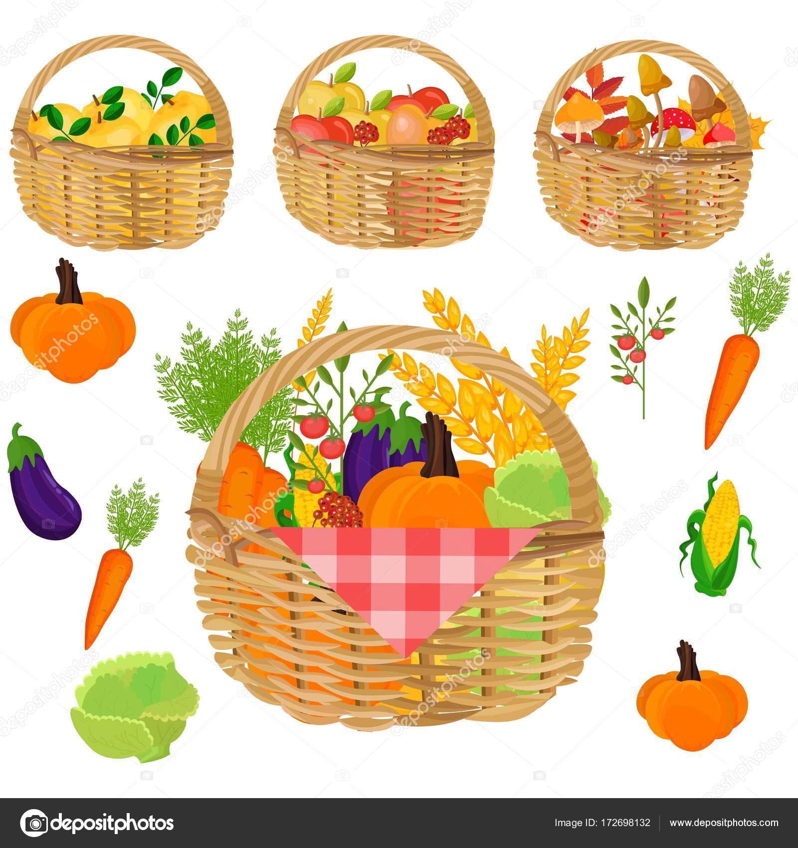 Cestas de verduras. Vectores de plantillas de cosecha de otoño ...