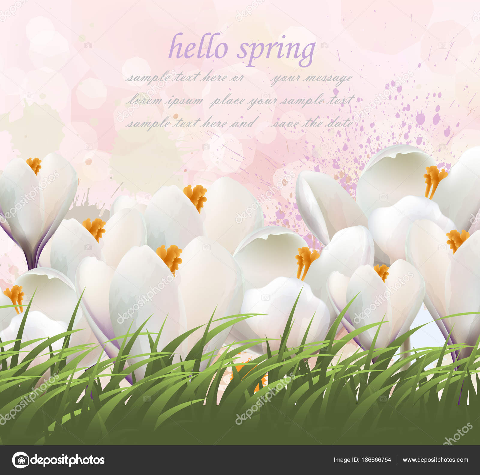 Hello Spring Flowers Card Vector Watercolor White And Grass Lovely Greeting Colorful Splash Illustration Background By Inagraurymail