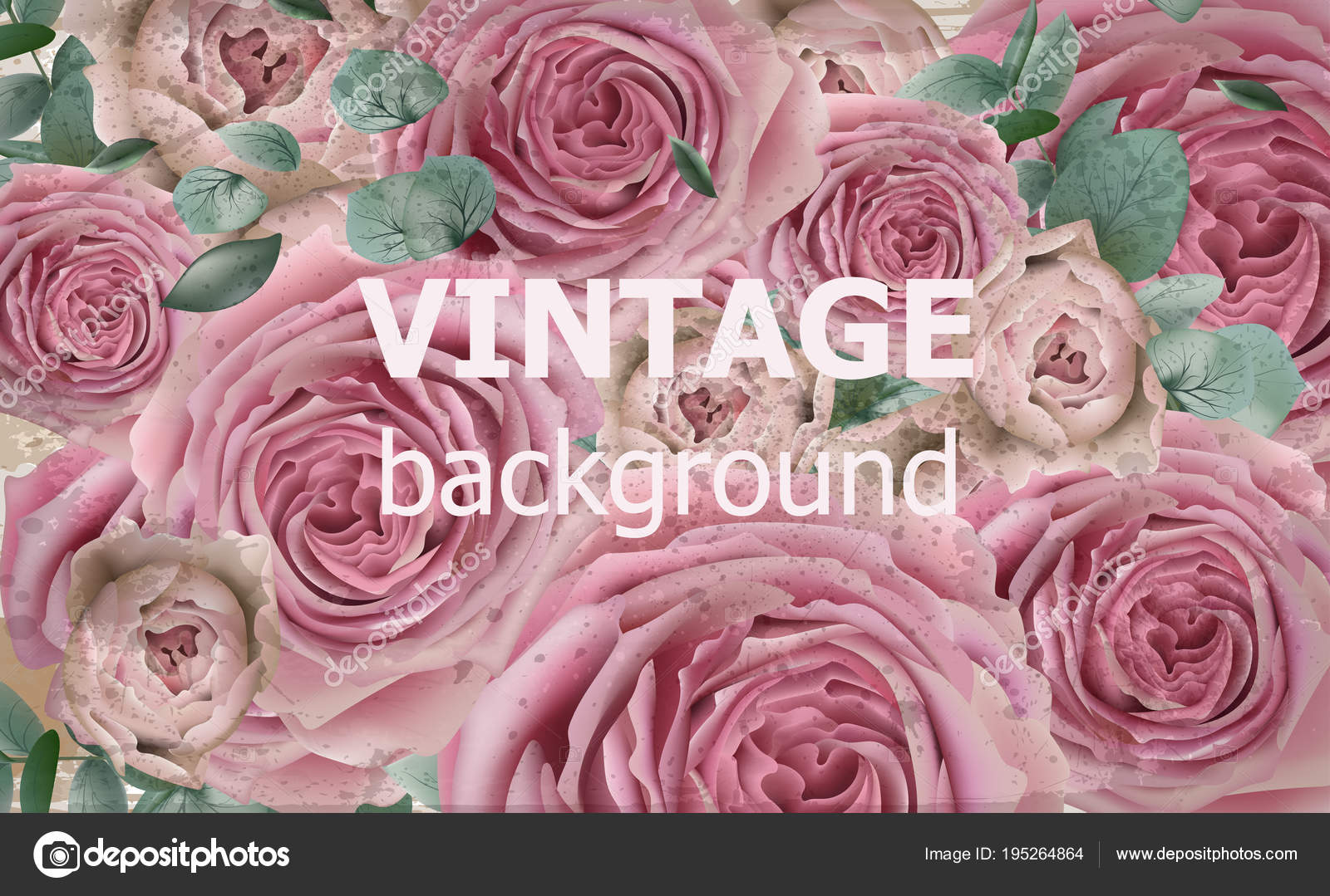 Vintage Beauty Background With Roses Vector Excellent Vintage Card