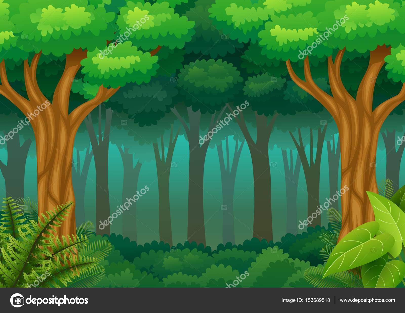 緑の森の背景 — ストックベクター © dualoro #153689518