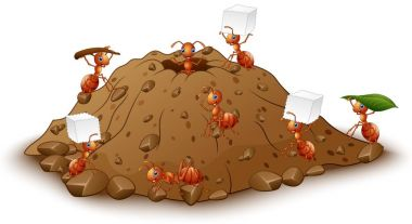 Cartoon ants colony with anthill