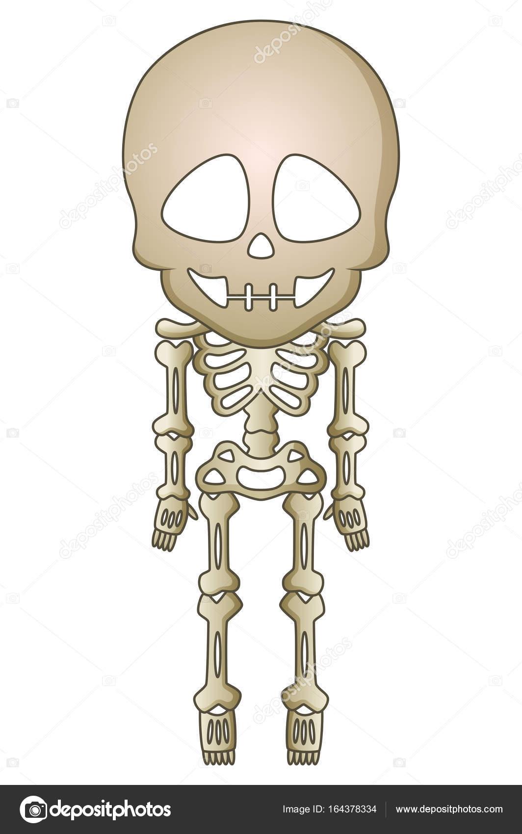 Esqueleto de dibujos animados halloween — Archivo Imágenes ...