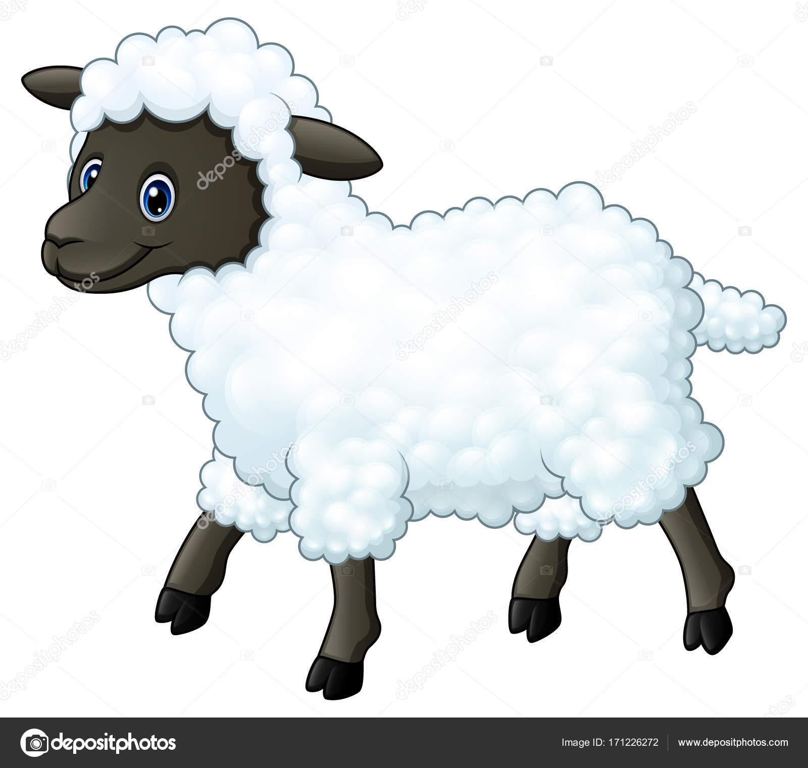 Pecore carino in stile cartone animato scaricare vettori gratis
