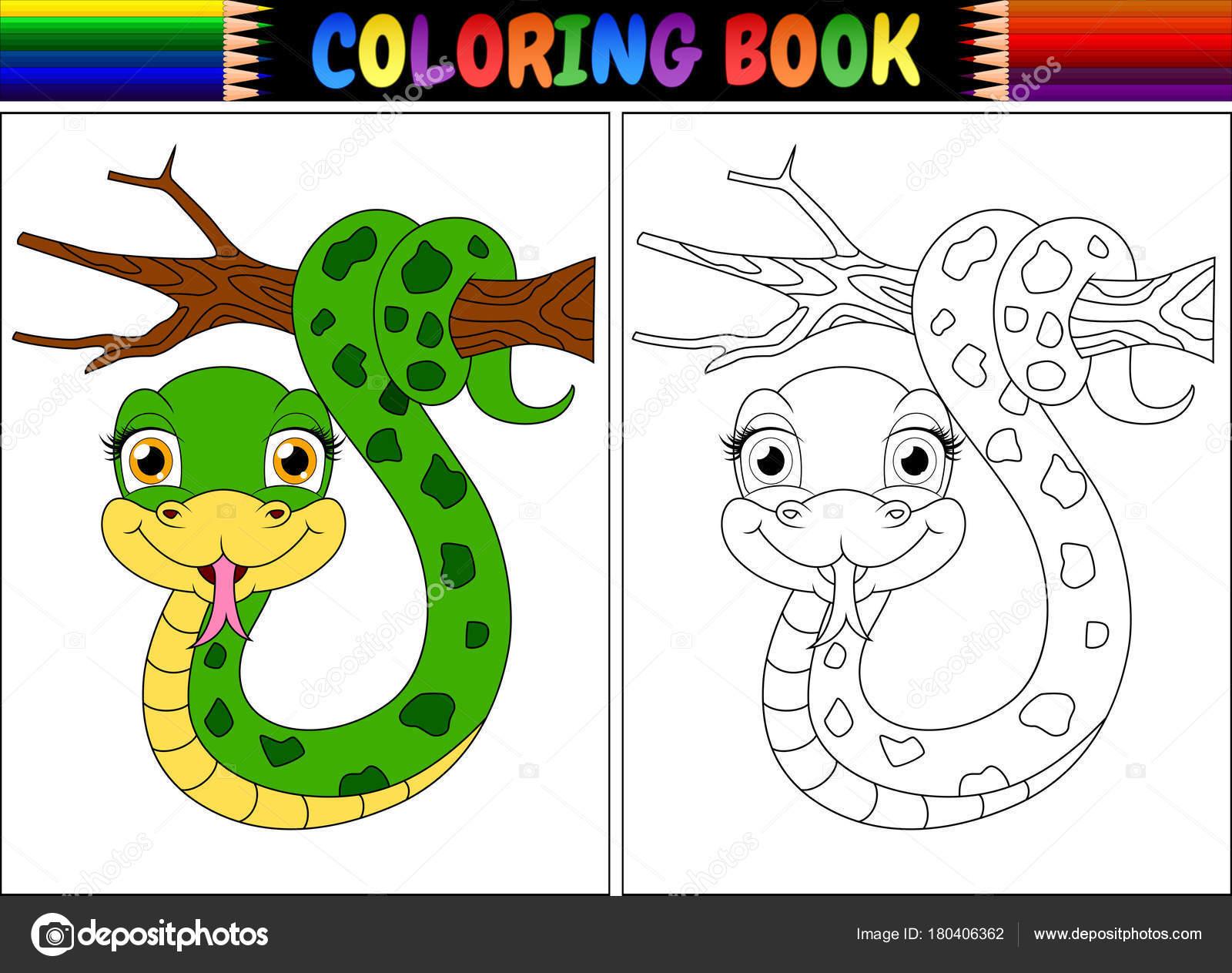 Ilustración Vector Libro Para Colorear Con Linda Serpiente Sobre ...