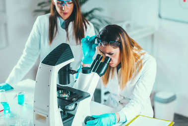 Life science research,  scientists placing sample under the microscope