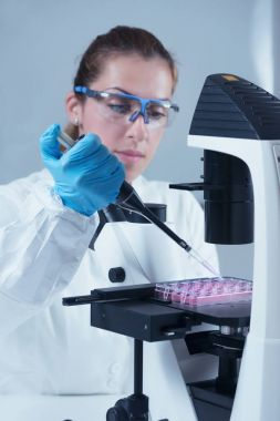 Female scientist with microscope and micro pipette working in laboratory