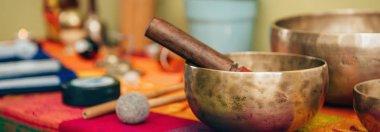close up of Tibetan singing bowl