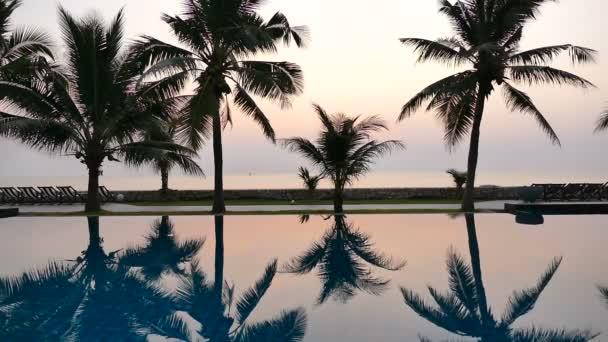 krajina s tropickými palmami odráží ve vodě při západu slunce