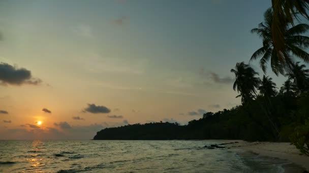 vista del tramonto delle onde del mare, palme e cielo drammatico