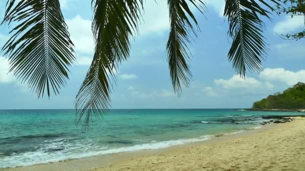 Tropická Pláž s palmami a modrý oceán vlny