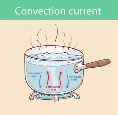 Diagram illustrating how heat is transferred in a boiling pot clip art vector