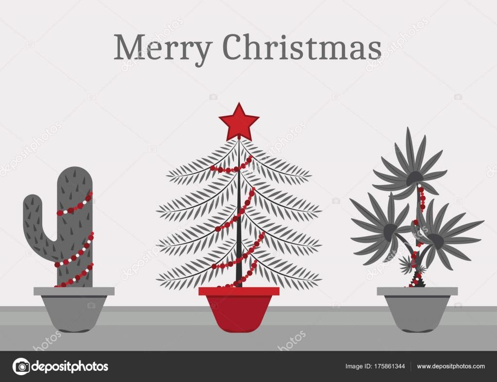 Christmas Time Every Plant Christmas Tree Cactus Spruce Palm Tree ...