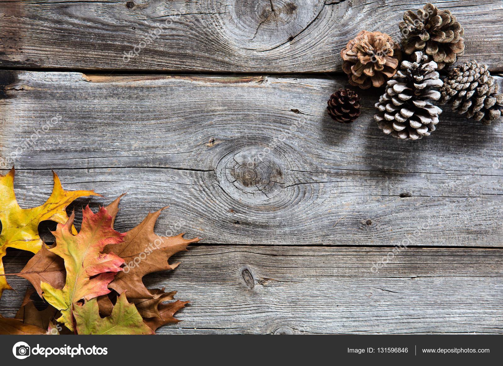 Fondo de invierno con hojas de color, conos de abeto de madera vieja ...
